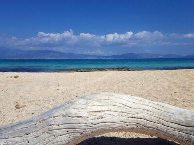 chrissi beach